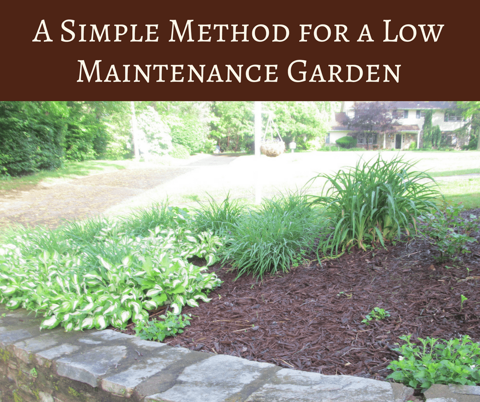 A weed control method for a low maintenance garden for Weeds garden maintenance